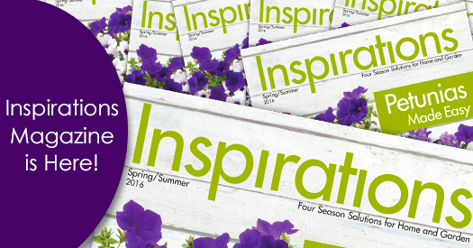2016-Inspirations-Mag-is-Here_525x275