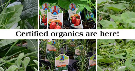 525x275_Certified-Organics