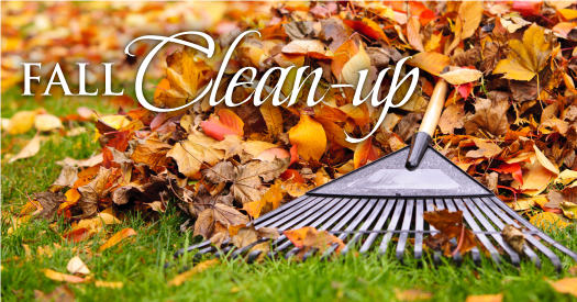 Fall-Clean-up_525x275a
