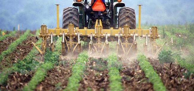 Farm_Crops