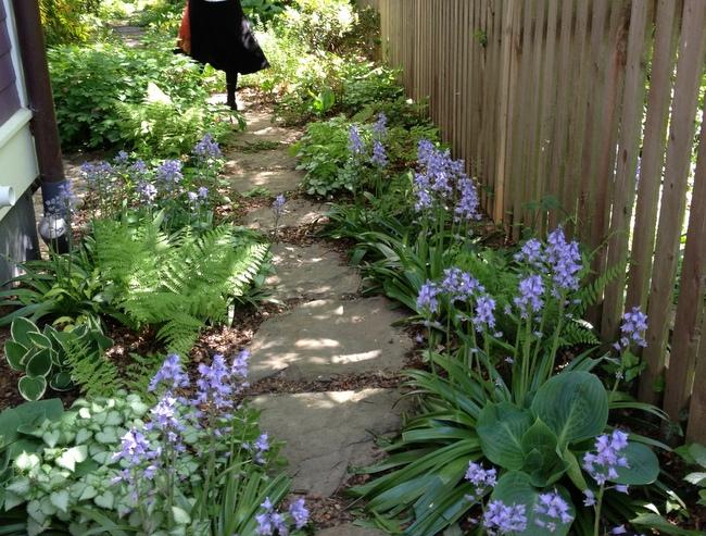 Gardens Seen on Tour - Homestead Gardens, Inc. | Homestead ... on Shady Yard Ideas id=31145