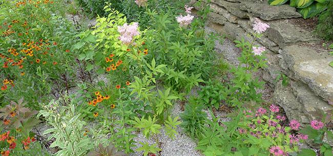 High Quality What Is A Rain Garden?   Homestead Gardens, Inc. | Homestead Gardens, Inc.