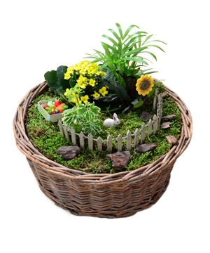 basket-fairy-garden (2)