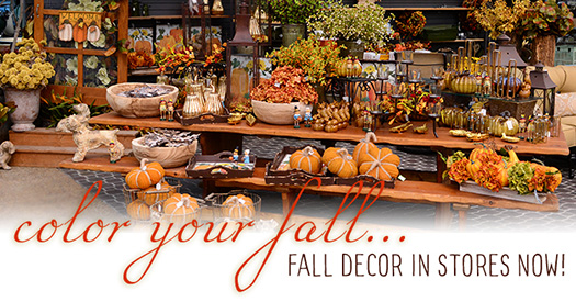 fall-decor-here