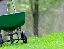 fall-lawn-fertilization