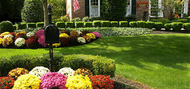 Garden Supplies Bird Feeders Fertilizers Annapolis Severna ...