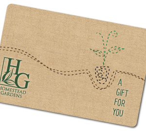 gift-card_350x270
