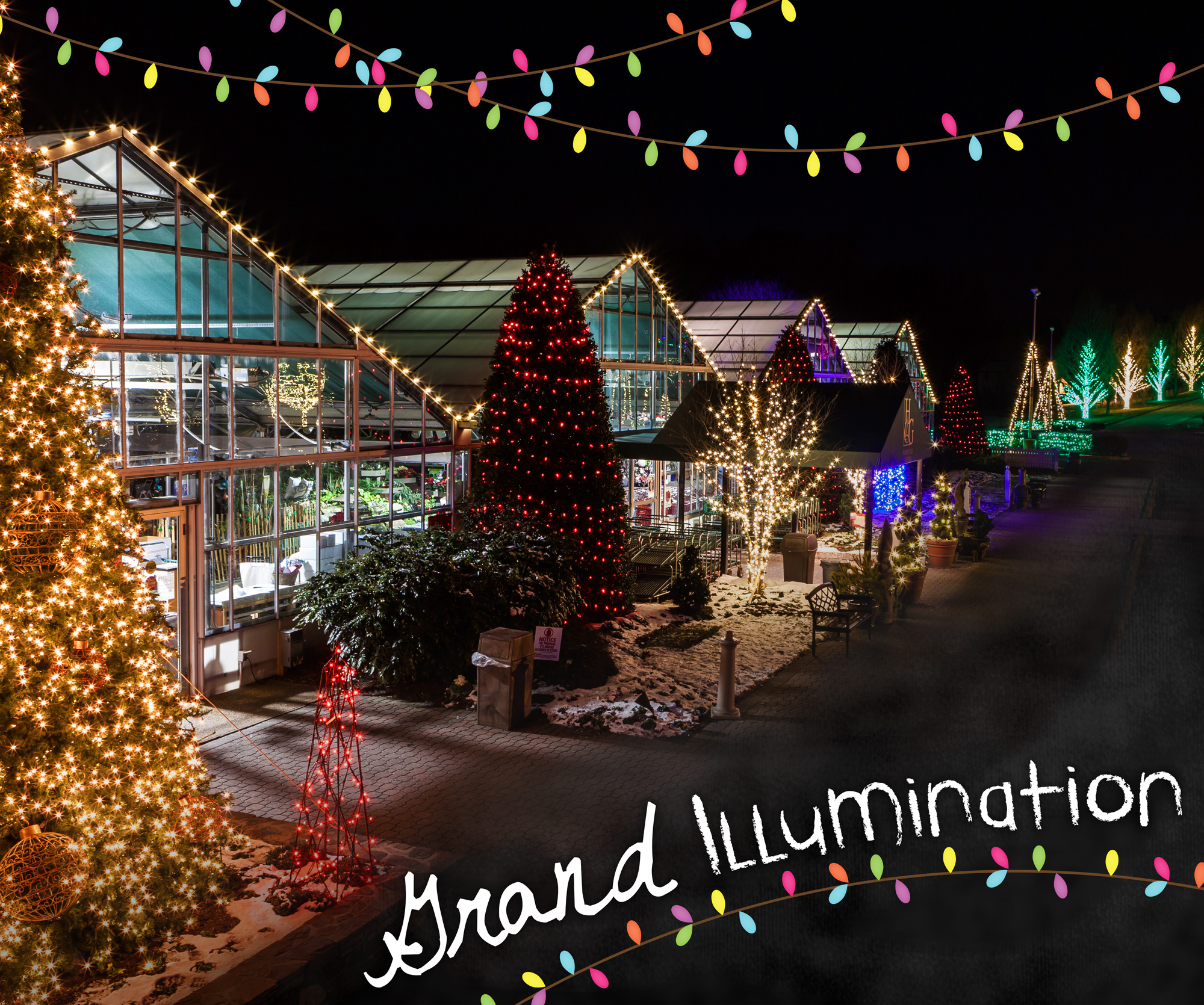 Homestead Gardens Landscaping: Grand Illumination - Homestead Gardens