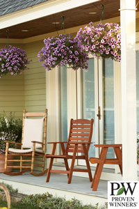 hanging flower baskets on porch