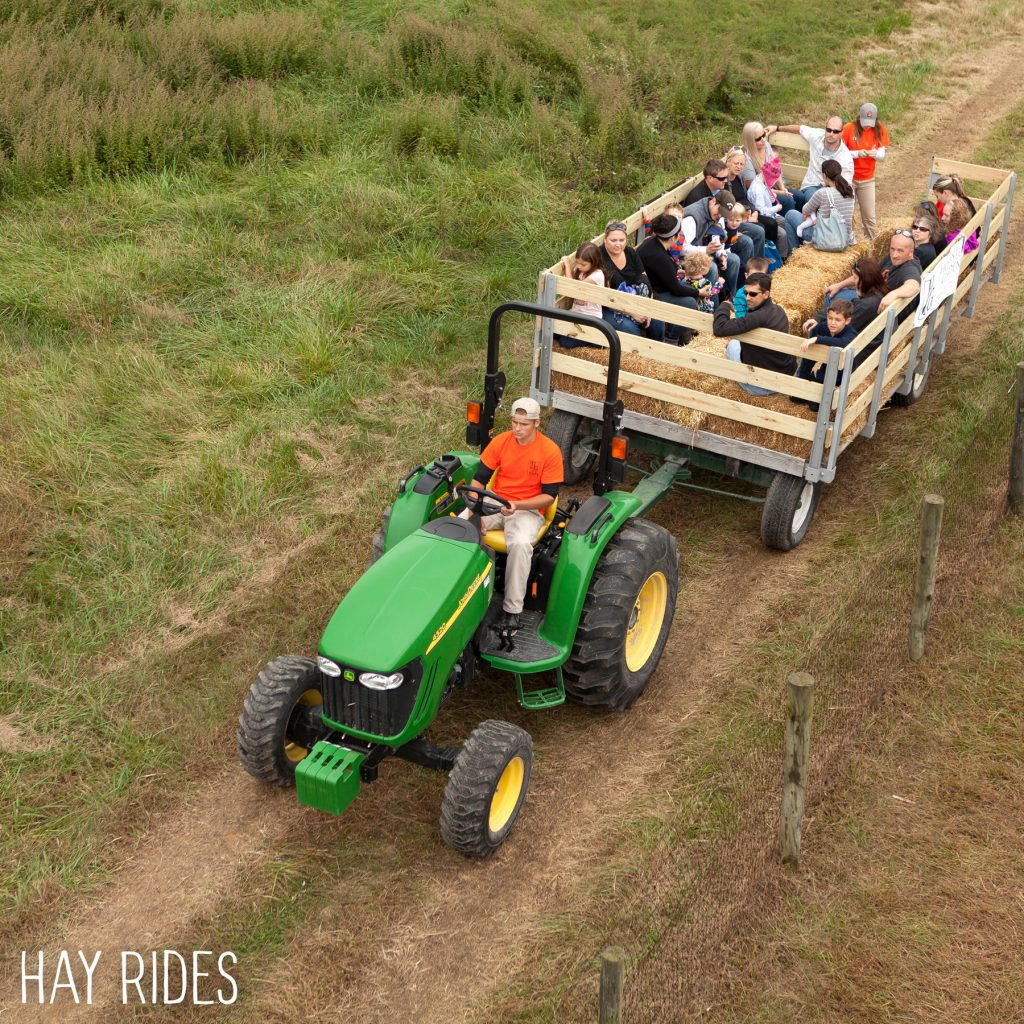 Hay rides homestead gardens inc homestead gardens inc for Homestead gardens fall festival