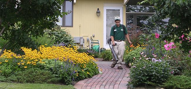 Landscape Design Lanscaper Annapolis Patios Plantings Annapolis