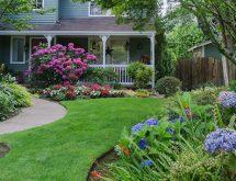landscaped-backyard