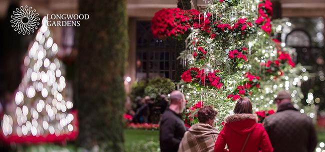 Longwood Gardens Christmas 2019.Longwood Gardens Holiday Trip 2018 Homestead Gardens Inc