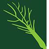 veggie-icon-65x65