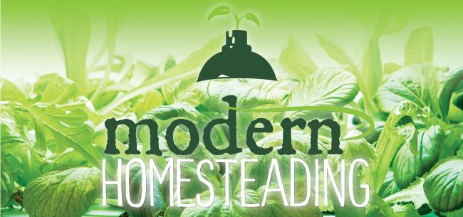 modern-homesteading-GREEN_650x305