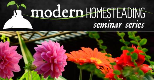 modern homesteading seminar series