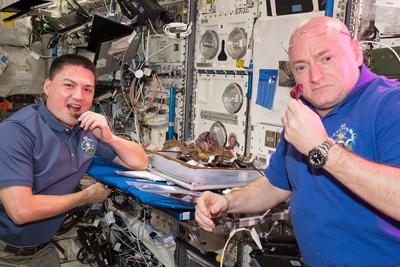 Scott Kelly enjoying lettuce he grew in space