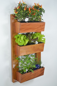 wall mounted planter